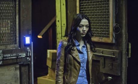 Flashback - Arrow Season 3 Episode 19