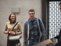 Cute in Glasses - Whiskey Cavalier