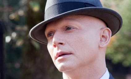 Michael Cerveris to Guest Star on A Person of Interest
