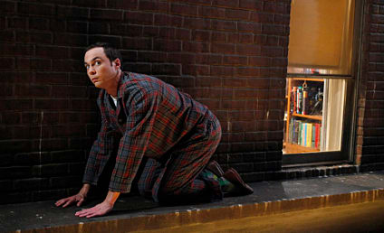 "The Big Bang Theory Review: ""The Bozeman Reaction"""