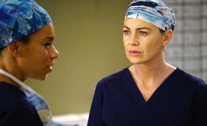 Watch Grey's Anatomy Online: Season 12 Episode 20