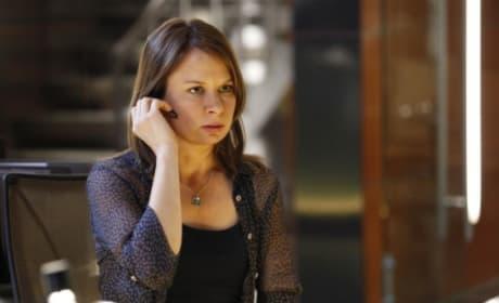 Mary Lynn Rajskub as Chloe