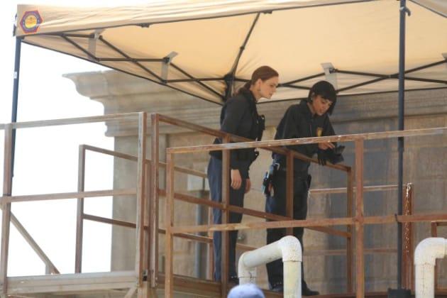 Cam with Brennan
