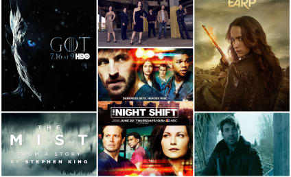 17 Shows You MUST Watch This Summer!