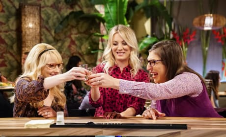 The Bachelorette Party - The Big Bang Theory