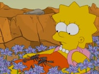 The Simpsons Season 22 Episode 15