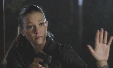 A Cautious Approach - Criminal Minds Season 12 Episode 19