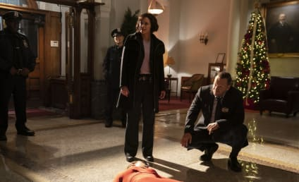Blue Bloods Season 10 Episode 10 Review: Bones to Pick