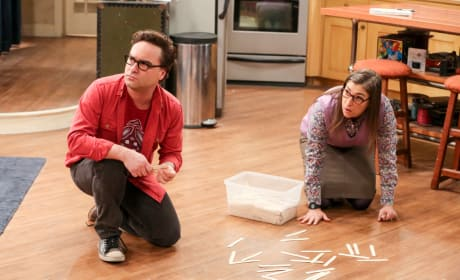 Leonard and Amy Bond - The Big Bang Theory