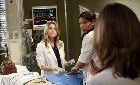 Mer and Callie