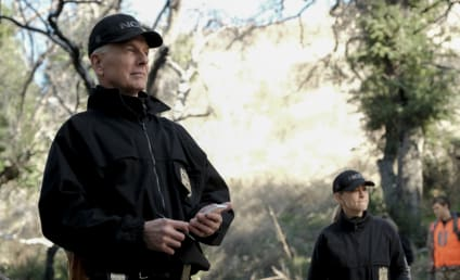 NCIS Season 18: Mark Harmon Says Shortened Season Was a 'Shock'