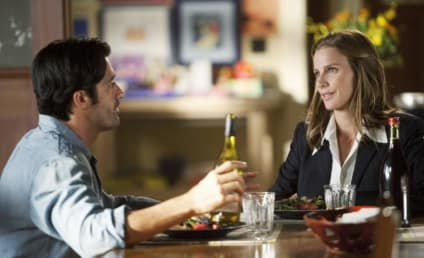 "Brothers & Sisters Review: ""The Wine Festival"""
