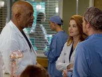 Grey's Anatomy Season 13 Episode 14 Review: Back Where You Belong