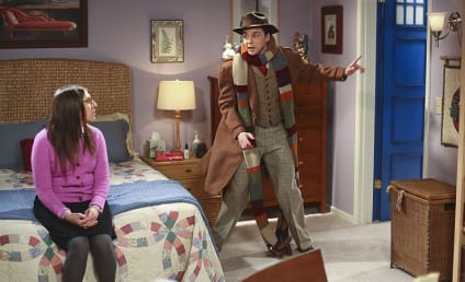 The Big Bang Theory: Watch Season 8 Episode 19 Online