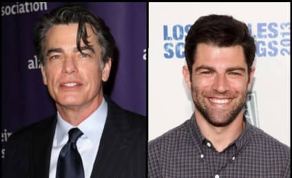 New Girl Casts Peter Gallagher as Schmidt's Dad