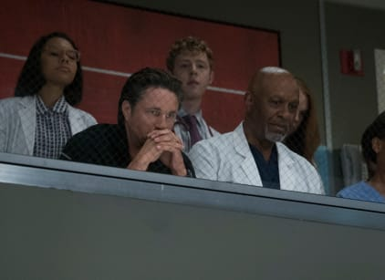 Watch Grey's Anatomy Season 14 Episode 1 Online