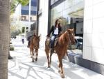 A Horseback Ride - The Bachelorette