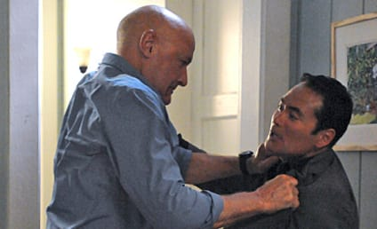 Hawaii Five-0 Review: Together Again