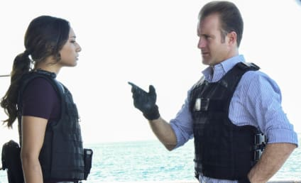Watch Hawaii Five-0 Online: Season 8 Episode 9