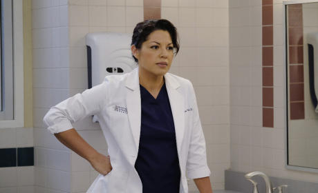What Will Callie Say? - Grey's Anatomy Season 12 Episode 6