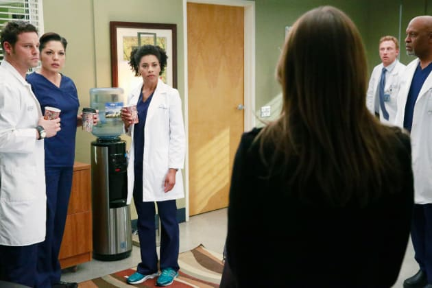 Shocking News - Grey's Anatomy Season 11 Episode 22