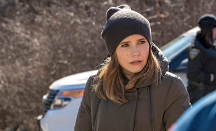Chicago PD Season 4 Episode 17 Review: Remember the Devil