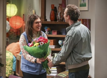 Watch The Big Bang Theory Season 10 Episode 6 Online