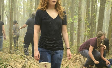 Under the Dome Canceled After Three Seasons