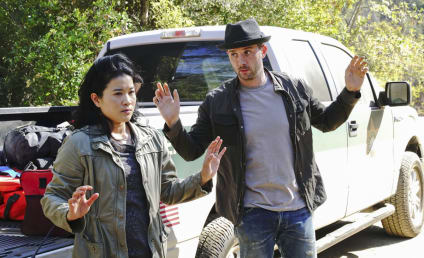 Scorpion Season 4 Episode 10 Review: Crime Every Mountain