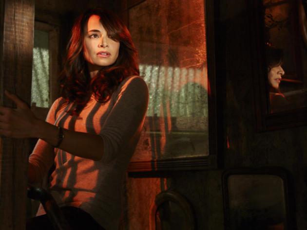 Mia Maestro as Nora Martinez