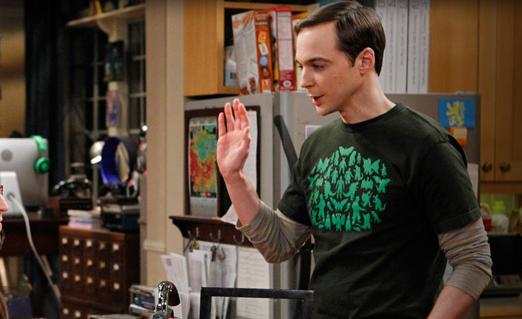 Sheldon the Caretaker