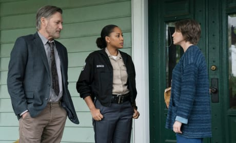 The Sinner Teaser: First Look at Season 2!