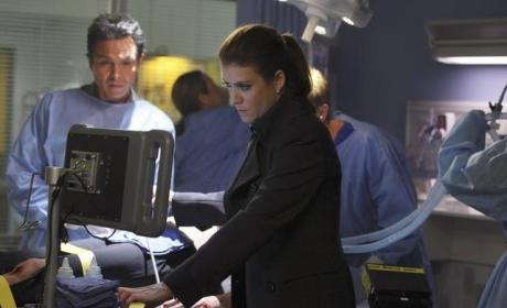 Addison at Work
