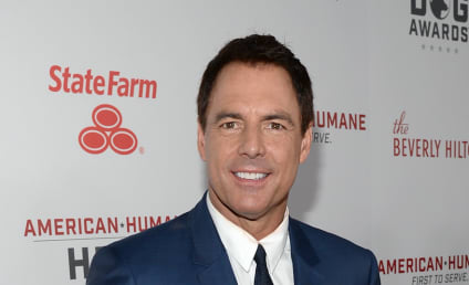 Home & Family: Mark Steines Claims He Was Fired for Complaining Of Sexual Harassment