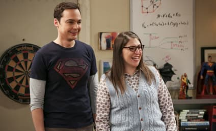Watch The Big Bang Theory Online: Season 12 Episode 13