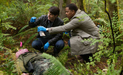 Grimm Review: Warm and Fuzzy
