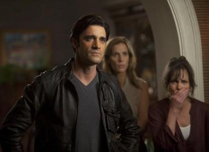 Watch Brothers & Sisters Season 5 Episode 8 Online
