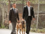 Avoiding the Numbers - Person of Interest