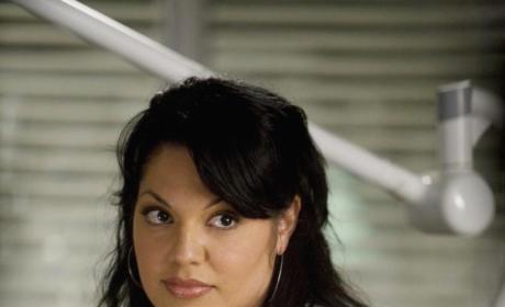 Callie Torres Pic