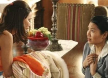 Watch Desperate Housewives Season 2 Episode 14 Online