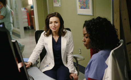 Amelia and Stephanie Look at Scans - Grey's Anatomy Season 11 Episode 22