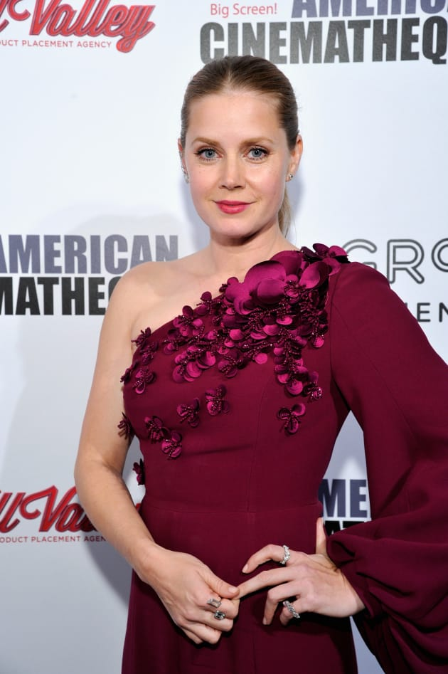 Amy Adams Attends Event
