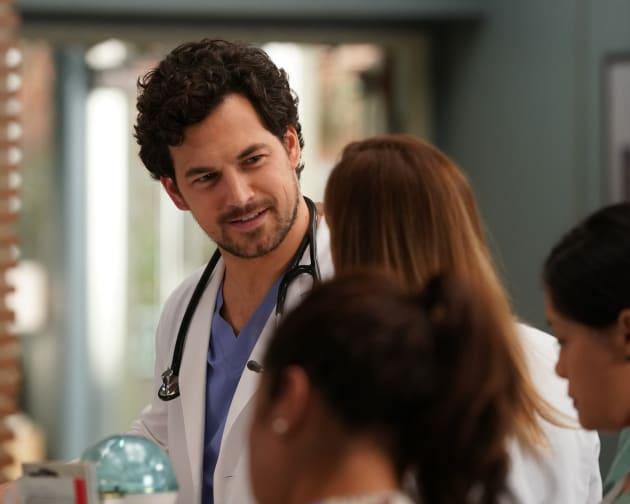 GreyS Anatomy Episode Guide