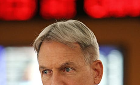 Gibbs Pic