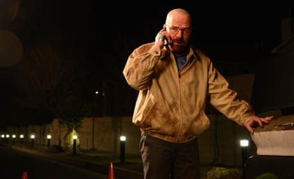 Breaking Bad: Watch Season 5 Episode 14 Online