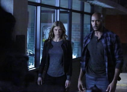 Watch Agents of S.H.I.E.L.D. Season 2 Episode 12 Online