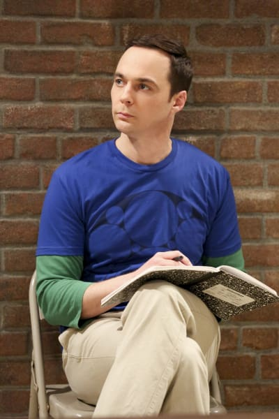 Sheldon is Working Hard - The Big Bang Theory Season 10 Episode 20