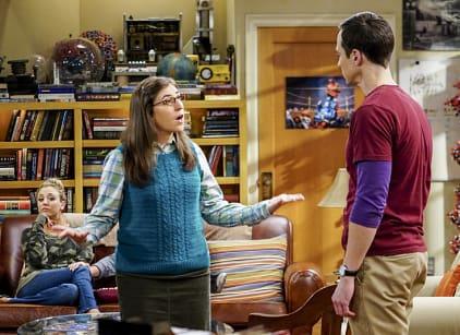 Watch The Big Bang Theory Season 10 Episode 5 Online