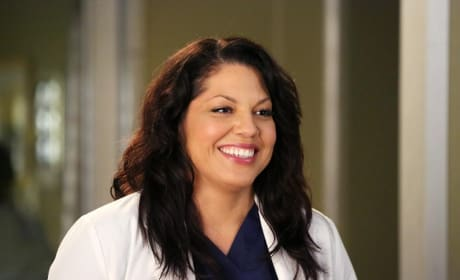 Callie Torres Snapshot - Grey's Anatomy Season 11 Episode 8