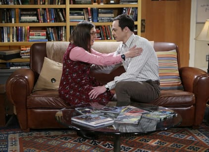 Watch The Big Bang Theory Season 8 Episode 24 Online